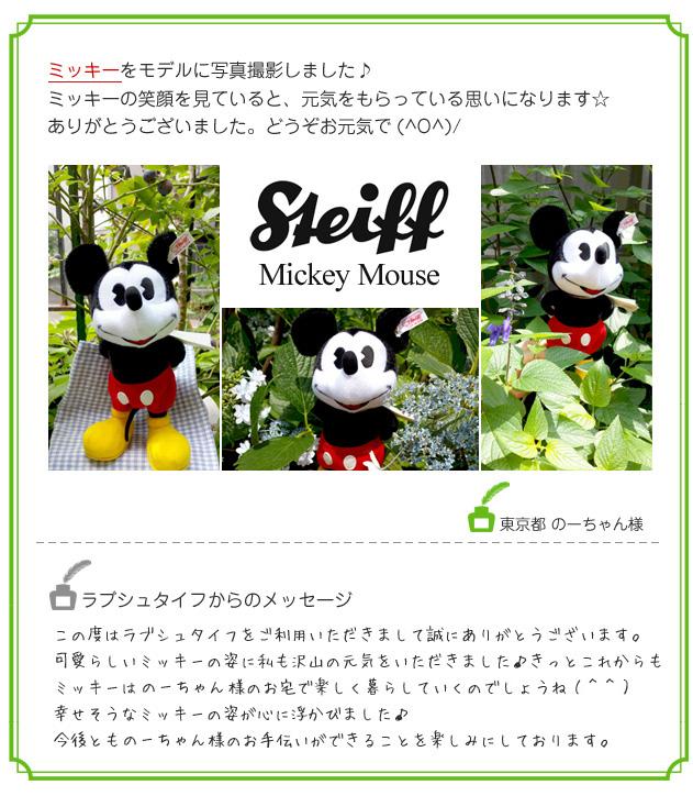 ミッキーをモデルに写真撮影しました♪ミッキーの笑顔を見ていると、元気をもらっている思いになります☆ありがとうございました。どうぞお元気で(^O^)/